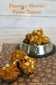 Pumpkin Puppy Muffins! Help your dog celebrate fall with these healthy treats. #homemade #diy #fall #dogs #pumpkin