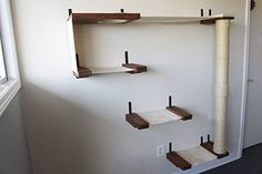 Does your kitty like being up high? Check out these cool cat shelves from www.coolcattreeplans.com #catsdiyshelves