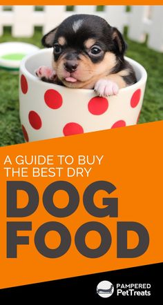 A Guide to Buy the Best Dry Dog Food - PamperedPetTreats Cute Puppies, Dogs And Puppies, Best Dry Dog Food, Dog Nutrition, Dog Training Techniques, Puppy Food, Homemade Dog Food, Dog Behavior, Dog Food Recipes