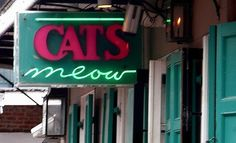 cats meow, new orleans