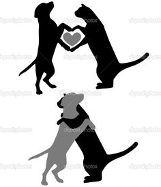 Cão e gato, abraçando com corações
