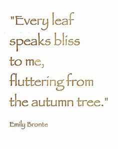 Emily Bronte quote ~ Every leaf speaks bliss to me, fluttering from the autumn tree. Autumn Day, Autumn Trees, Autumn Girl, Autumn Nature, Hello Autumn, Autumn Leaves, Emily Bronte, Happy Fall, Fall Halloween