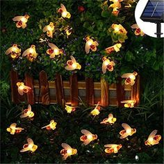 Still, looking for something attractive to decorate your patio or garden? Solar strings lights are just what you need to make your home get the attention of admirers this festive season. Whether it is for a festive or romantic mood, or just to bring a cheerful feel to your home, these solar string lights are the best choice for you. -Solar Powered Cute Honey Bee Led String Fairy Light can help you deal with it! It can adorn your garden, patio, deck, celebrations, bedrooms and trees, mantle, balc Solar Fairy Lights, Solar String Lights, String Lights Outdoor, Outdoor Lighting, Lighting Ideas, Pathway Lighting, Backyard Lighting, Outdoor Decor, Rope Lighting
