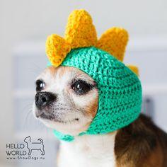 #crochet #crochethat #crochetdinohat #crochetdoghat #crochetdog #crochetfordogs #crochetdinosaurhat #dino #dinosaurs #cutedog #ceochetaddict #crochetfun #crocheting #crochetart #crochetgram #crochetlife #chihuahua #doghat #dogcrochet #chihuahuacrochet #søstrenegrene #sostrenegrene #grenediy #grenegarn #greneart #dogcostume #costume