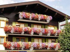 Dekoracje balkonu DecoArt24.pl