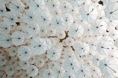 An installation of over 1,000 fanciful white umbrellas floated overhead at the 2015 Habitare Design Fair, infusing the space with a dreamy atmosphere. The installation was the brainchild of environmental artist Kaisa Berry and creative director Timo Berry of BOTH