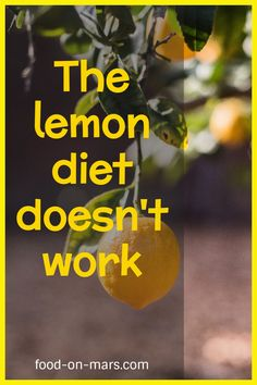 """I read Beyonce tried the lemonade diet, """"the Master Cleanse Lemonade Diet"""". However, if you are struggling to lose weight you have to pay attention to the common mistakes that bring you far from your goal.The idea is to drink water with lemon juice for a couple of week and see the benefits and the results. However this is a dangerous and weird diet. As a registered dietitian I don't recommend it. Stay away from fad diets.Check out my blog to find out all the weirdest diets to avoid… Dietitian Humor, Cabbage Diet, Lemonade Diet, Master Cleanse, Work Meals, Food Puns, Registered Dietitian, Fad Diets, Lemon Water"""