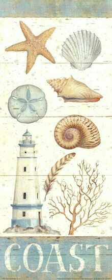 Coastal Collage Shell Wall Art | Beach cottages, Art ...