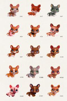 lps corgies | Pets:Corgi