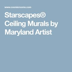 Starscapes® Ceiling Murals by Maryland Artist