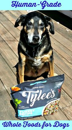 Human-Grade Whole Foods for Dogs from Tylee's #Chewy #sponsored        Dog Mom | Dog Products | Life with Dogs | Rescue Dogs | Dog Reviews
