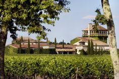 #magnifique domaine du #château Smith #HautLafifite à louer pour un beau #mariage. #ambiance #bucolique garantie !  #Vignoble #Vigne #vine #vineyard #Gironde #France