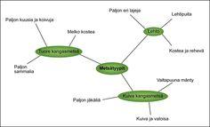 Metsätyypit –miellekartta