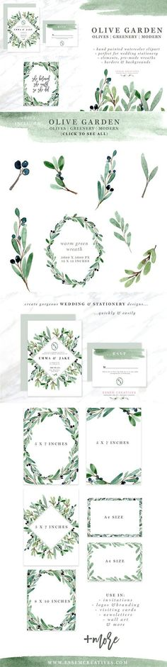Watercolor Olive Branch Clipart by Essem Creatives on @creativemarket