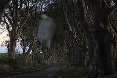 more paranormal news: This could be the first photograph that has captured the eerie Grey Lady that folklore says haunts the spooky stretch of road. Real Ghost Pictures, Ghost Photos, Ghost Caught On Camera, Ghost Sightings, The Spectre, Ghost And Ghouls, Paranormal Photos, Horror, Real Ghosts