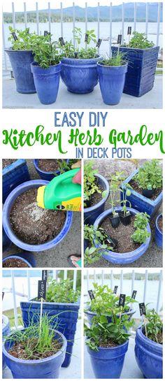 Easy DIY Kitchen Herb Garden in Deck Pots tips at The Happy Housie - Easy Diy Garden Projects Herb Garden Design, Diy Garden, Garden Projects, Garden Pots, Herbs Garden, Roses Garden, Herb Garden In Kitchen, Kitchen Herbs, Gardening For Beginners