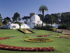 Got to love how they design the lawns with flowers through out the year infront of the Conservatory of Flowers.