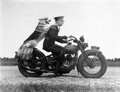 20 vintage motorcycle photography ideas motorcycle couple pictures motorbikes for 2019 motorcycle Harley Davidson, Vintage Dog, Vintage Cars, Vintage Biker, Vintage Photographs, Vintage Photos, Motos Vintage, Motorcycle Photography, Police Dogs
