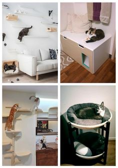main IKEA Hacks That Your Cat Will Love