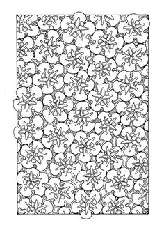 ☆ Colouring Page floral pattern
