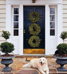 Three wreaths vertical - this would spruce up my plain front door.
