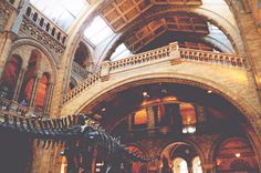Natural History Museum, London | via It's Travel O'Clock