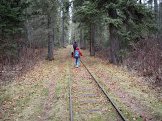 Hiking the Kingsmere Lake Trail in Saskatchewan's Prince Albert National Park