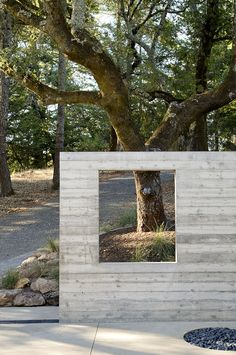 Concrete with timber impression