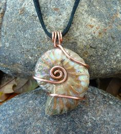 This pendant consists of a rock-hard fossilized Ammonite shell wrapped in pure copper wire and suspended from a soft deerskin cord. The fossil has Wire Wrapped Pendant, Wire Wrapped Jewelry, Wire Jewelry, Jewelry Crafts, Handmade Jewelry, Pandora Jewelry, Feet Jewelry, Jewlery, Seashell Jewelry