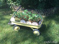 A Joyful Cottage: Cottage Life - Mon Petit Jardin