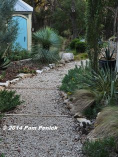A low-maintenance, pass-through garden instead of lawn in the side yard | Digging