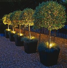romantische gärten beleuchtet | 100 Gartengestaltung Bilder und inspiriеrende Ideen für Ihren Garten
