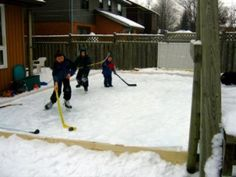 Backyard Rink- we could do this!