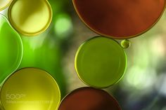 Apple and Chestnut by MandyDisher #nature #photooftheday #amazing #picoftheday