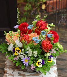 今日から花仕事 久しぶりの花市場は春の花が溢れて カラフルな彩りに心踊ります 1年間待ってたよ これから暖かくなる頃まで春の花達と 過ごせるってシアワセです アトリエショップでは今年も 季節の花レッスン(単発)を開催します 詳しいスケジュールはホームページに アップしています 一足先に春を満喫しましょう  #季節の花レッスン #単発レッスン #花のある暮らし #花贈り #花教室 #花レッスン #吉祥寺の花教室 #お花好きと繋がりたい #flowerpic #still_life_gallery #プティクールエーム #petitecourm #私の花の写真 #lifewithxA3 #instagram #instagramjapan #Instagrmmer #tokyocameraclub