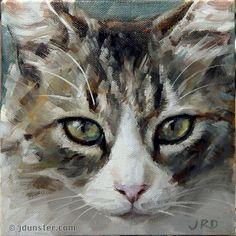 """Pretty & Fluffy Kitty"" original fine art by J. Dunster"