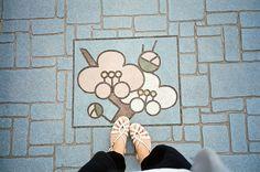 ウメ | Flickr - Photo Sharing!