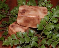 Tanekaha - Known as the celery herb Tanekaha was used medicinally as an astringent and antimicrobial agent by Maori people and early European settlers. The anti-microbial action of tannic acid has been well documented, and it has been shown to be effective against a range of bacteria, yeasts and viruses. A mild astringent with curative properties Homemade Products, Homemade Skin Care, Maori People, Soap Maker, Healing Herbs, Home Made Soap, Medicinal Plants, Native Plants, Herbal Remedies