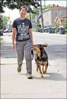 How to Teach Loose Leash Walking to Your Dog - Whole Dog Journal Article