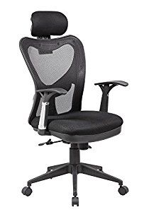 Modern Furniture Mesh Office Computer Chair with Adjustable Lumbar Support, Headrest and Multi-Position Recline Control, Black Luxury Office Chairs, Executive Office Chairs, Mesh Chair, Mesh Office Chair, Office Desk, Home Office Furniture, Modern Furniture, Brown Accent Chair, Adjustable Office Chair