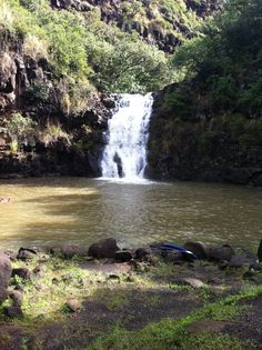 Waimea Falls. Submitted by Renata Vicente. #pinHawaii
