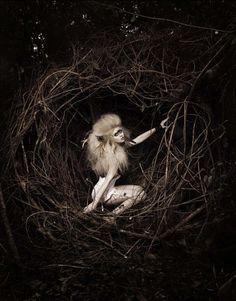 raised in the dark woods