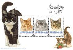 Postset Franciens katten 2 - Postsets - Postzegelproducten