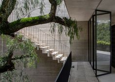 Concrete courtyard house positioned against a cliff.