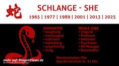 Chinesische Tierkreiszeichen: Schlange - Fakten | © premiumdesign - fotolia.com / DragonViews