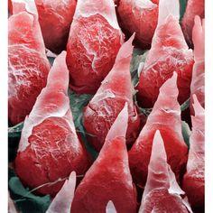 Human tongue surface, coloured scanning electron micrograph (SEM).
