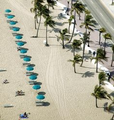 Bike lanes, pedestrian promenades and a curvaceous wave wall run along the main stretch of Fort Lauderdale's beachfront.
