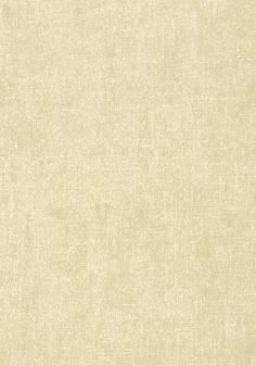BELGIUM LINEN, Stone, T57121, Collection Texture Resource 5 from Thibaut