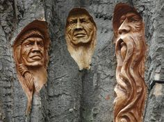 This is not Nate the Carver's work, but he told me this does not kill the tree. I have many chainsaw carvings in my yard when trees die or are broken by storms… we create temporary art! Wood Carving Faces, Tree Carving, Wood Carving Art, Chain Saw Art, Tree Faces, Man Faces, Wood Tree, Wood Wood, Carved Wood