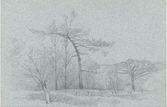 Rev Henry Robinson Wadmore - 19th Century Graphite Drawing, Landscape with Trees